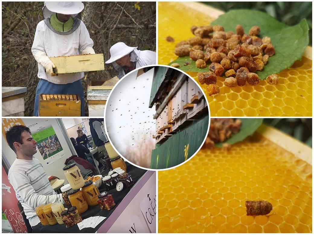 med,-proizvodnja-meda,-urbano-pćelarstvo
