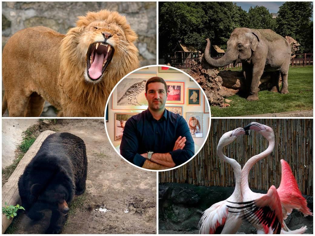 beogradski-zoo-vrt,-zoo-vrt-beograd,-beo-zoo-vrt