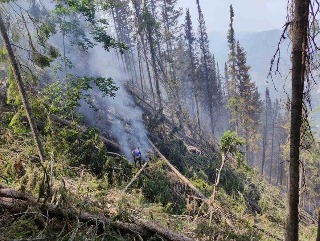 šumski požar tara (2)