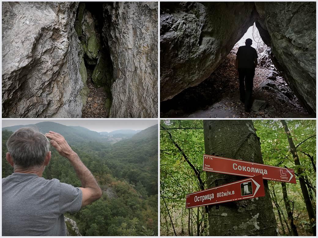 blago-nemanjića,-zmija,-Zmija-čuva-blago-Nemanjića-na-planini-Ostrici,-planina-ostrica