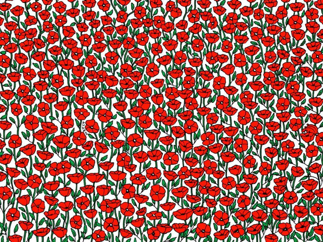 Ruže pronaći raka