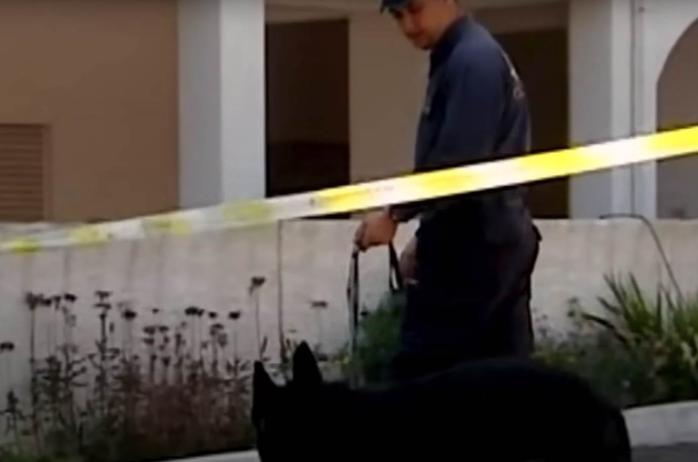 policajac i pas ispred letovalista u porgutalu