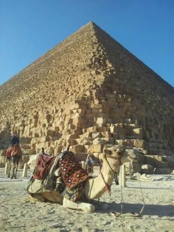 egipat kamila piramide kairo piramida egipćani