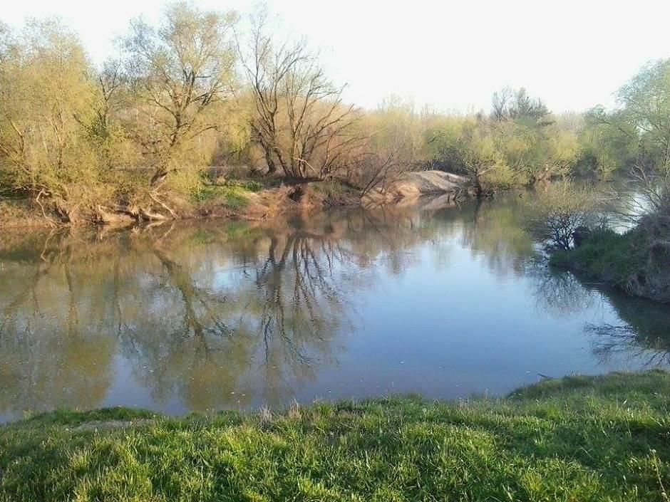 jaša tomić 8, reka, tamiš, priroda