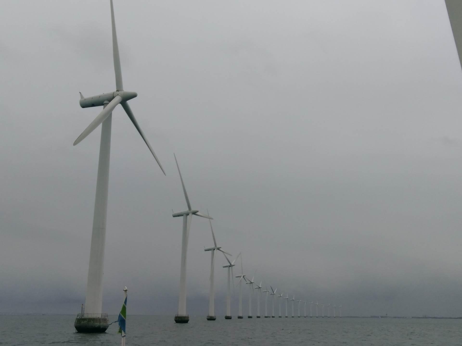 Danci zauzdali vetar, ne žele naftu, ni ugalj