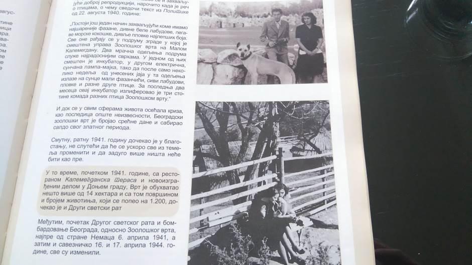 Muja - Beograđanin jači od svih bombi (FOTO)