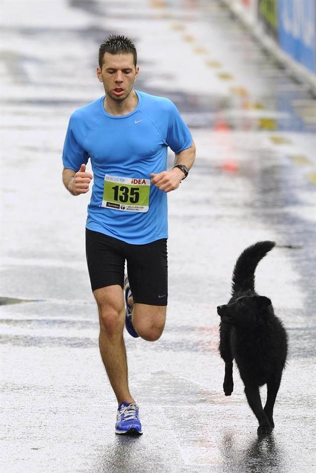 Maratonac trči u društvu psa