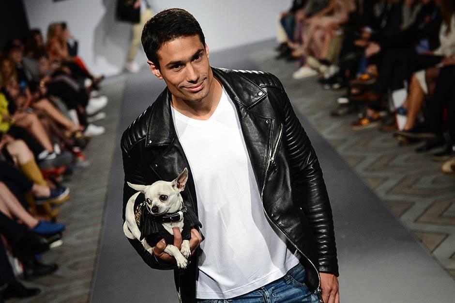 pas, moda, kožna jakna