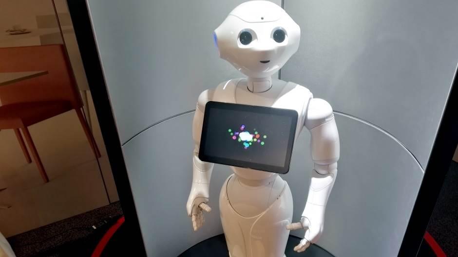 Pepper, Robot, Roboti, Peper