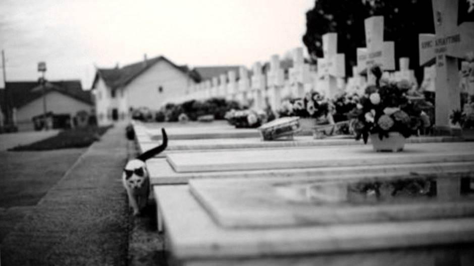 Kultura sećanja ili kult smrti