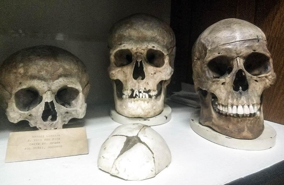 Priče koje kriju skeleti u Srbiji (FOTO)