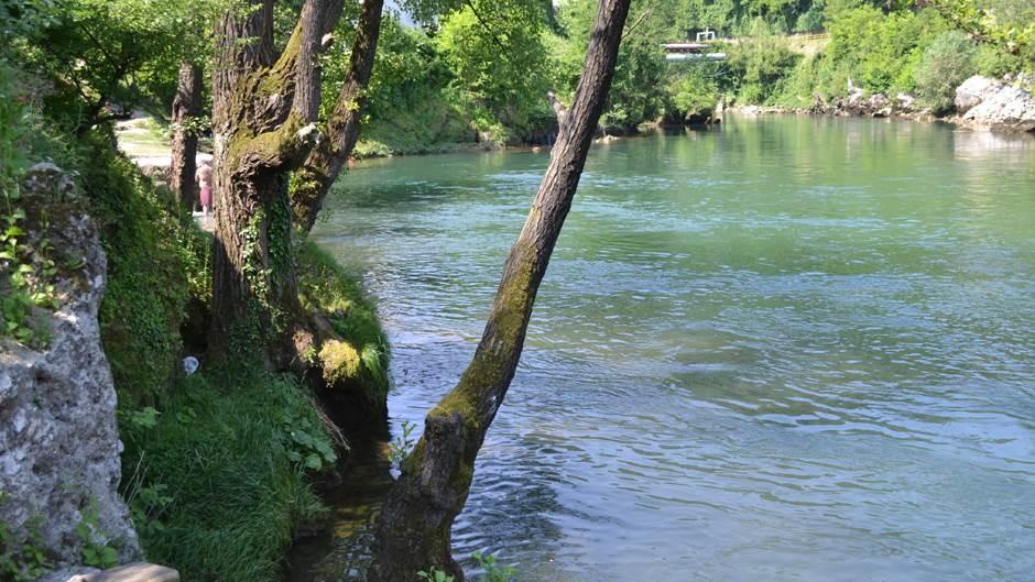 vrućica, vrbas reka vrbas