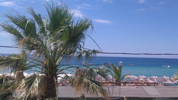 plaža nea flogita grčka leto odmor more palma palme turizam turisti