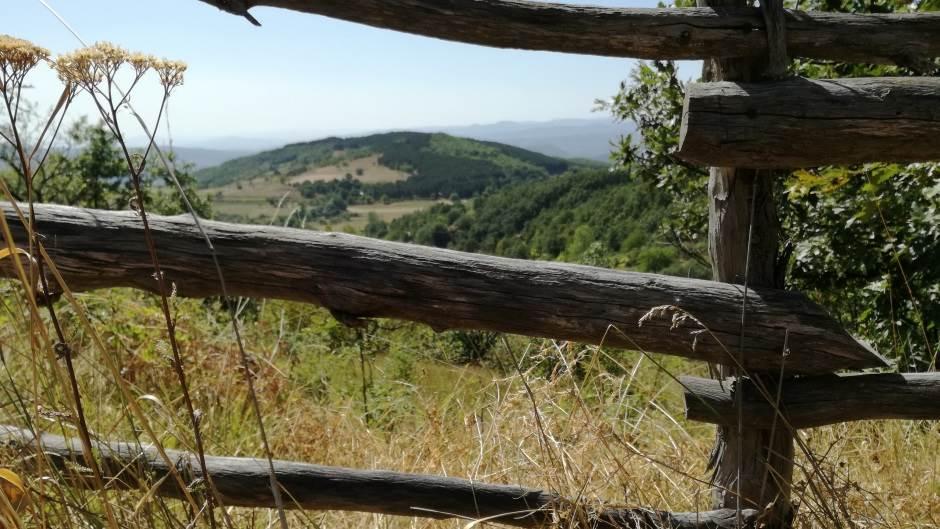 Kopaonik, selo, srpsko selo, taraba