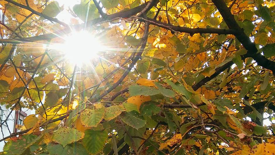Horoskop za oktobar: Nekom ljubav, nekom uspeh na poslu