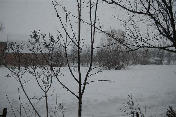 lebane, sneg