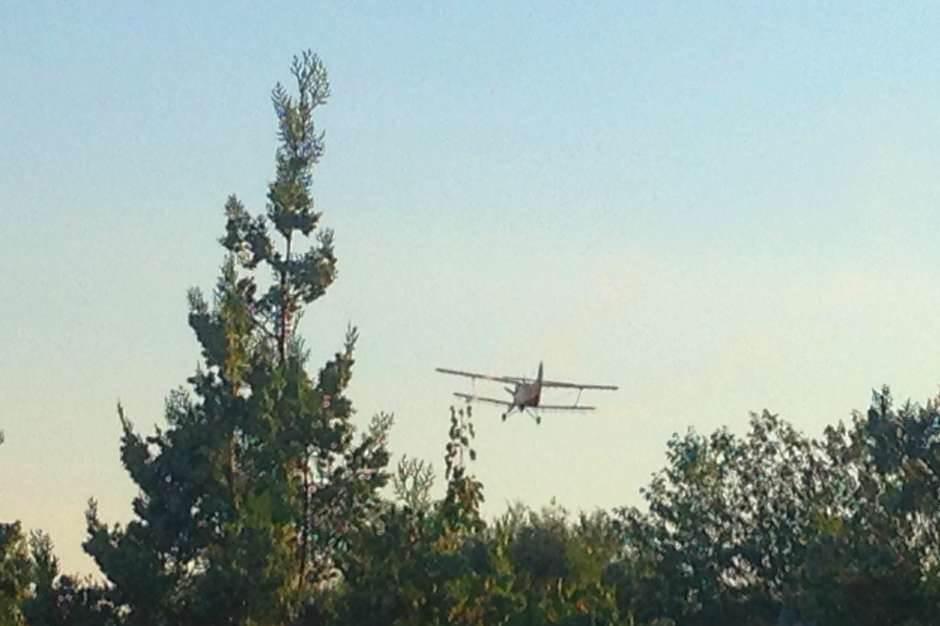 avion, komarci, zaprašivanje