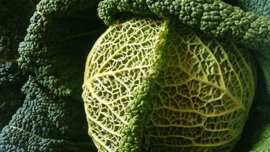 Nutricionistkinja kaže: Ovo je kralj među povrćem