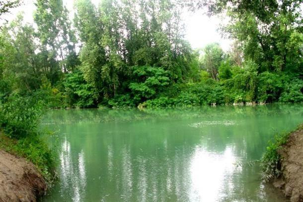 verona, italija, bara, jezero, priroda