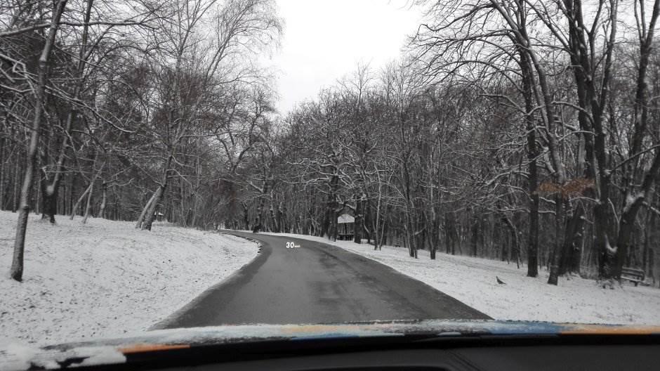sneg, put, kolovoz, šuma, planina, košutnjak