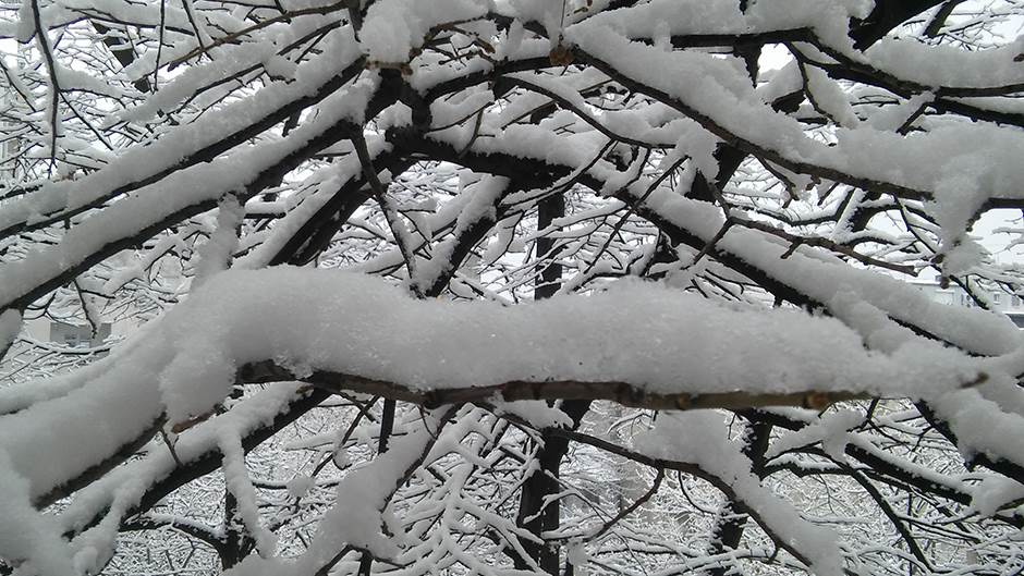 sneg, zima, vremenska