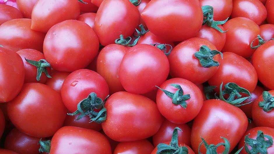 paradajz, povrće