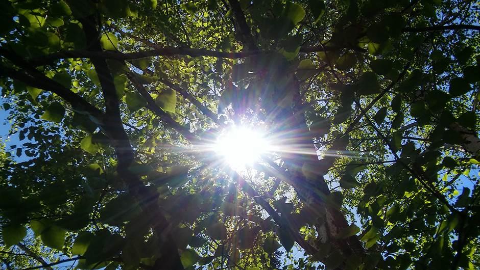 Mozemo-li-da-se-zastitimo-od-sunca-i-ipak-pocrnimo