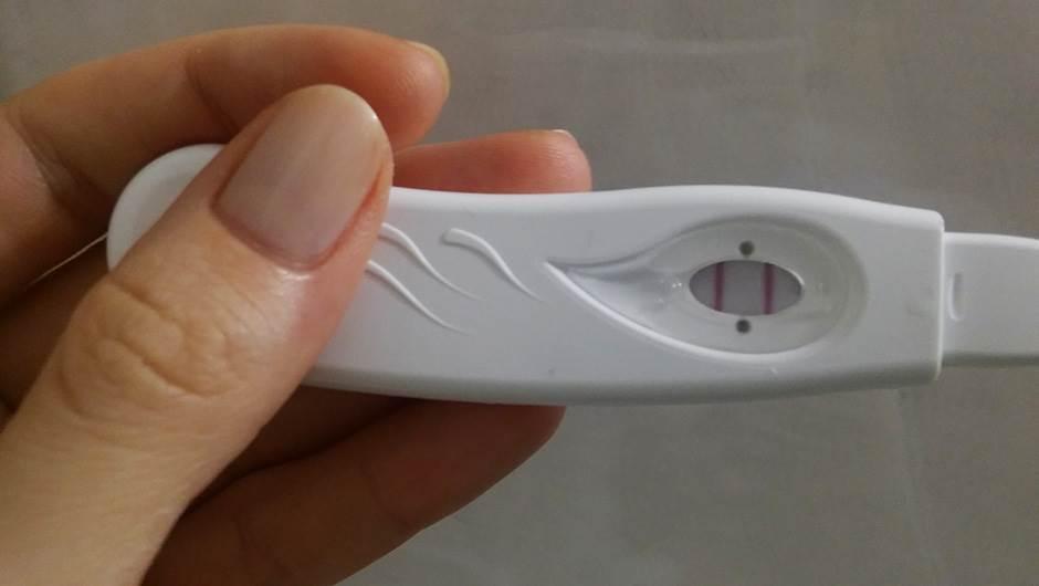 test, trudnoća, dvecrte