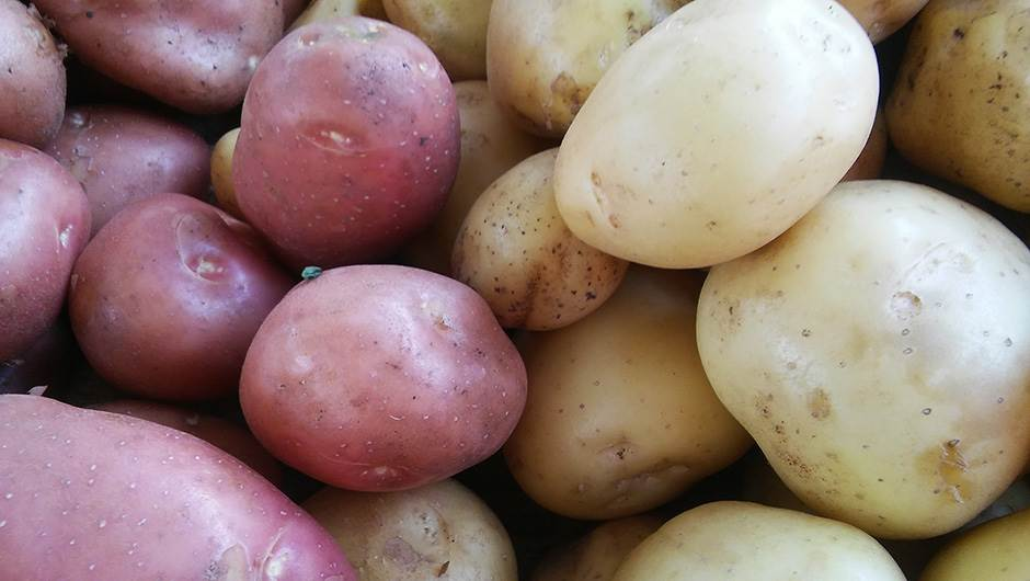 krompir, mladi krompir, krompirići