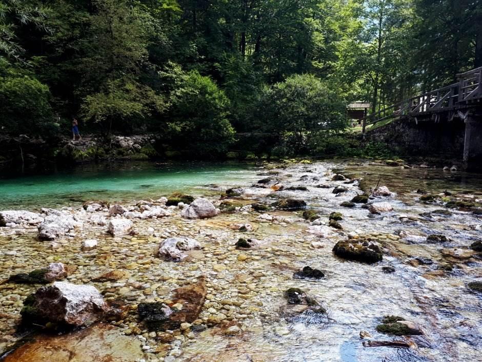 bohinj, bohinjsko jezero, jezero, priroda, slovenija