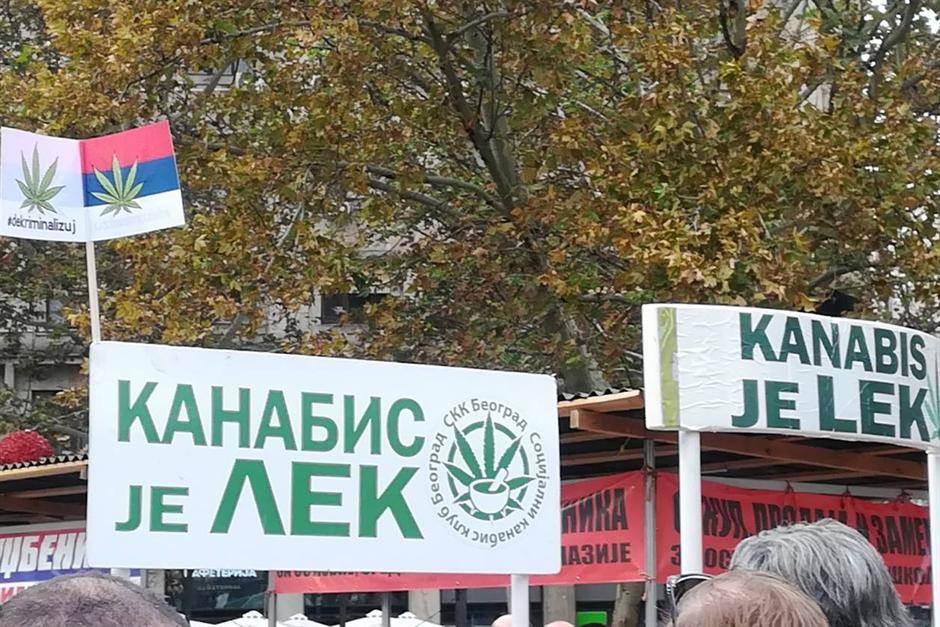 kanabis, marihuana, protest