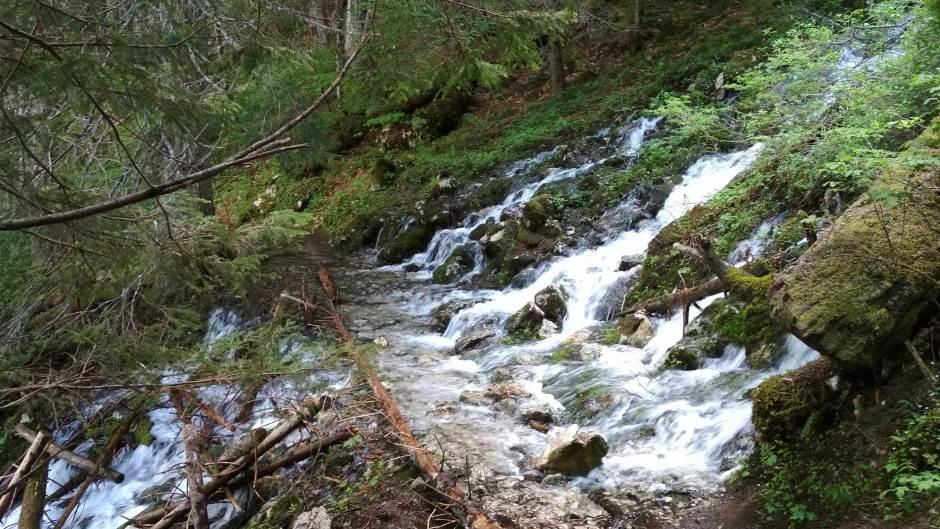 reka 2.jpg