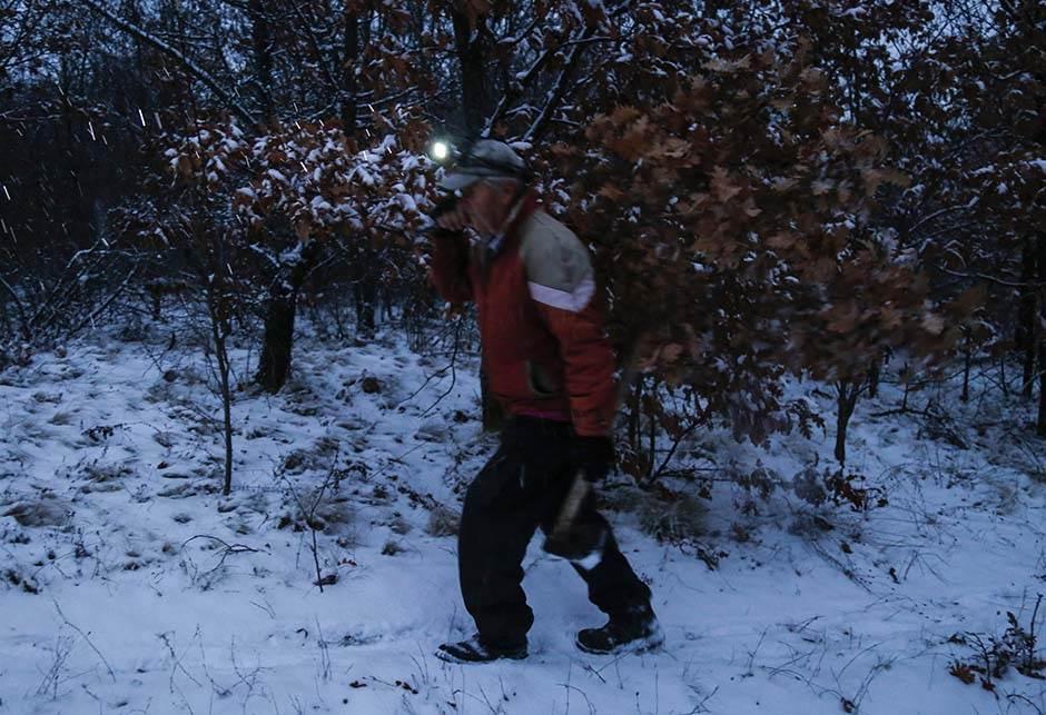 U šumu po badnjak