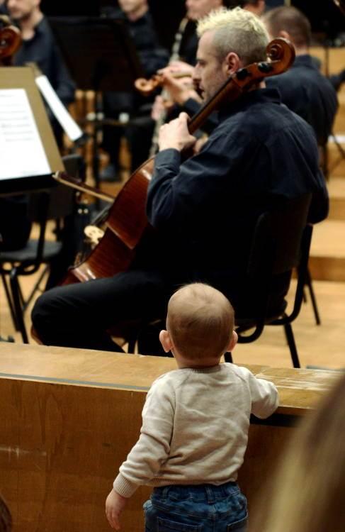 Bejbi bum na filharmonijski način