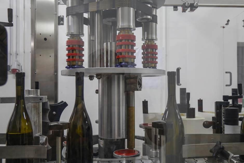 I čovek i biznis sazrevaju kao vino (FOTO, VIDEO)
