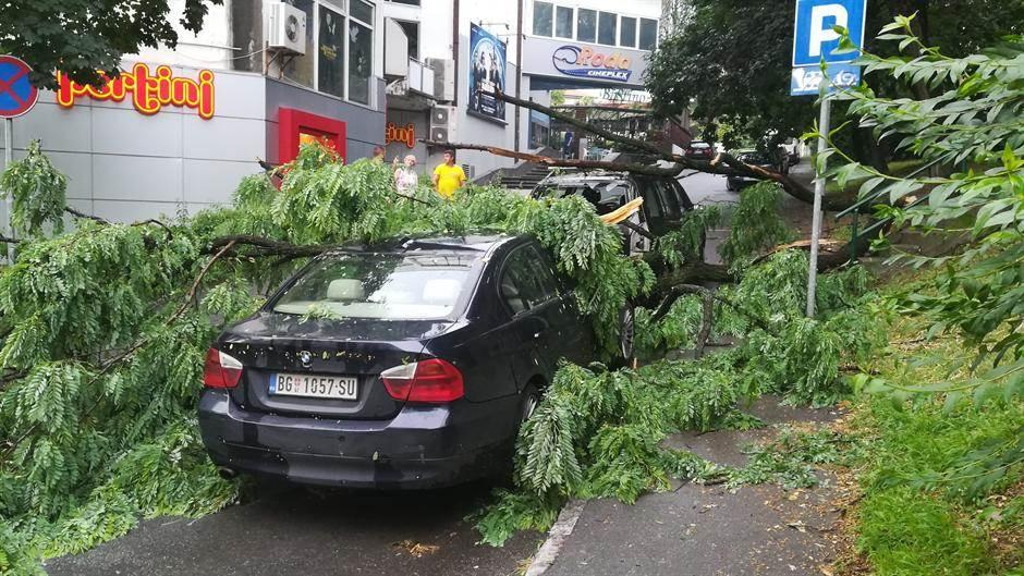 Vlasnik ovog automobila nije imao sreće