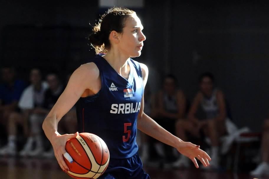 Sonja Petrović, Petrović, Petrovic