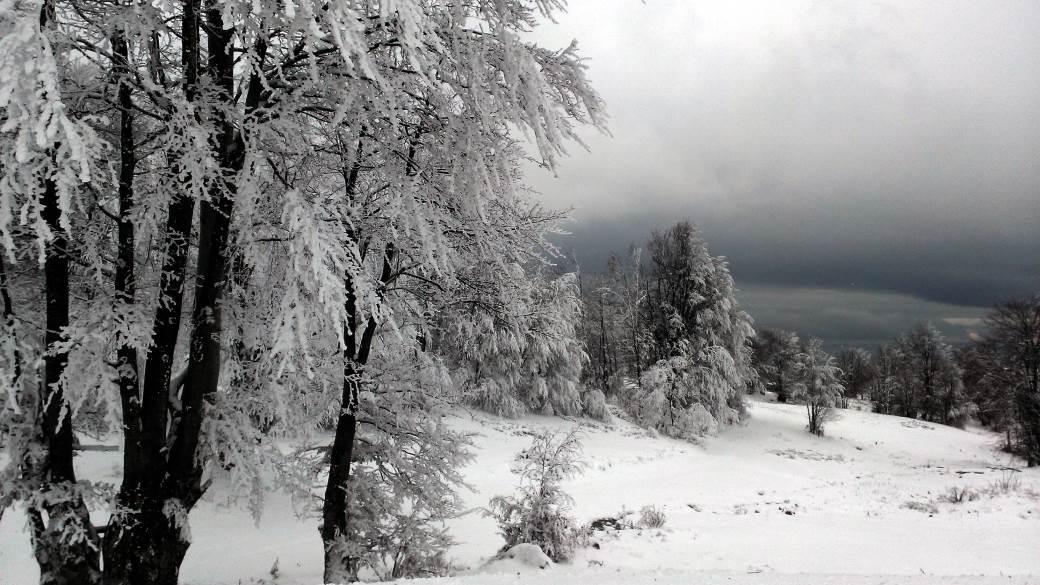 Zima, Sneg, Inje, Mraz, Sisarka, Šišarka, Iglice, Smet, Zavejano, Veje, Vejavica, Kopaonik, Tara, Zlatibor, Stara planina, Jabuka, Divčibare