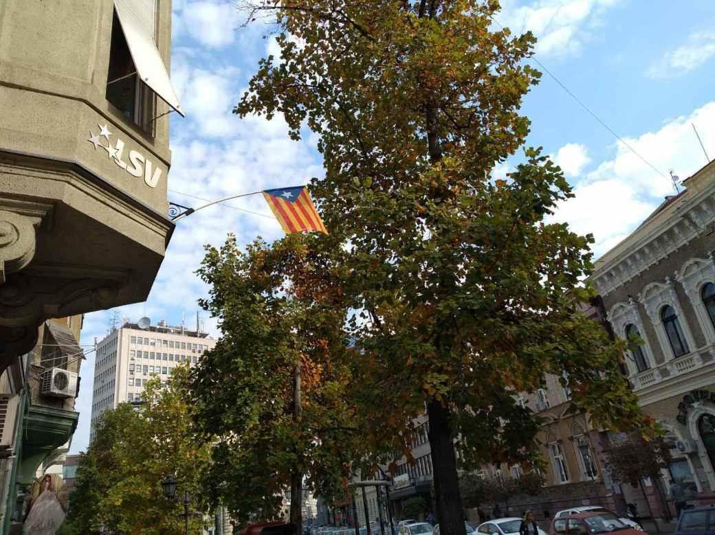 Katalonija, katalonska zastava, LSV