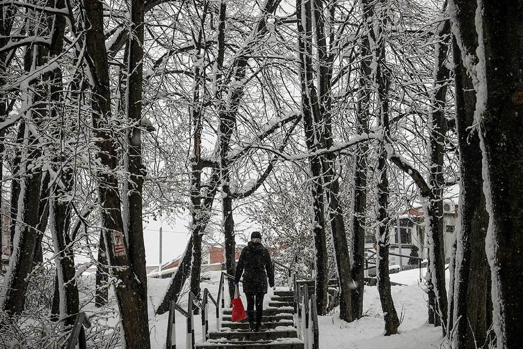 redovi gužva sneg vanredno stanje