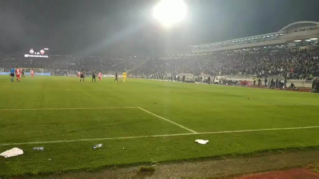 Vladimir Stojković napušta teren