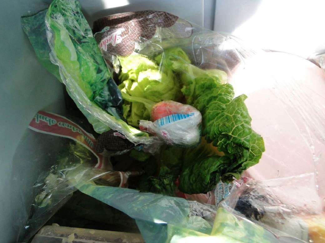droga zelena salata
