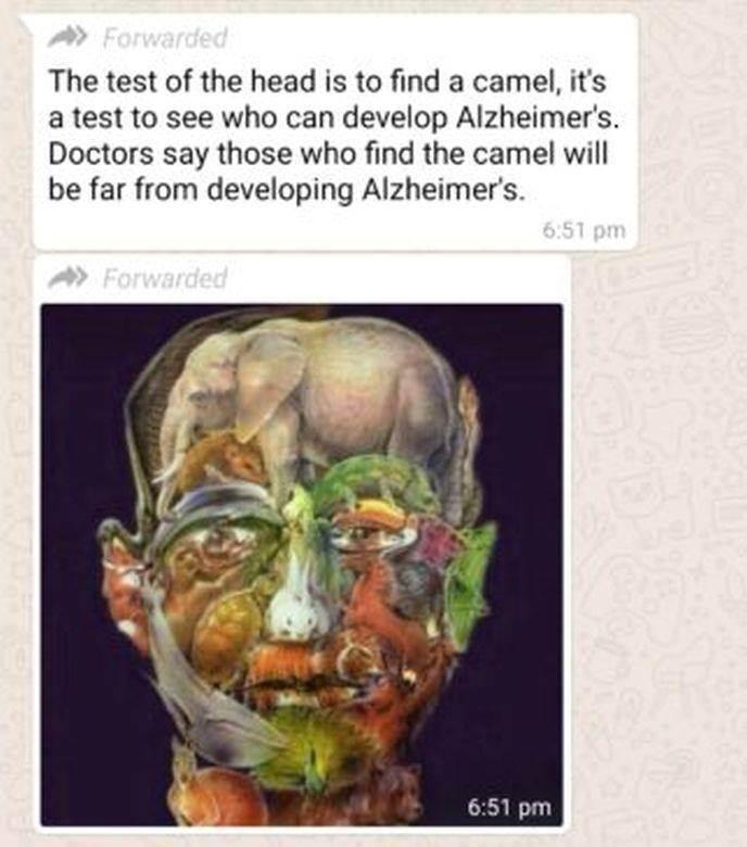 test Alchajmer