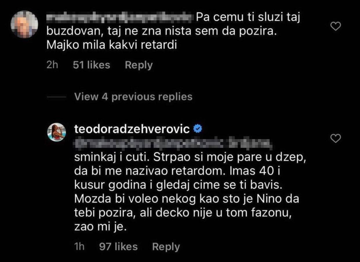 komentar, teodora dzehverovic