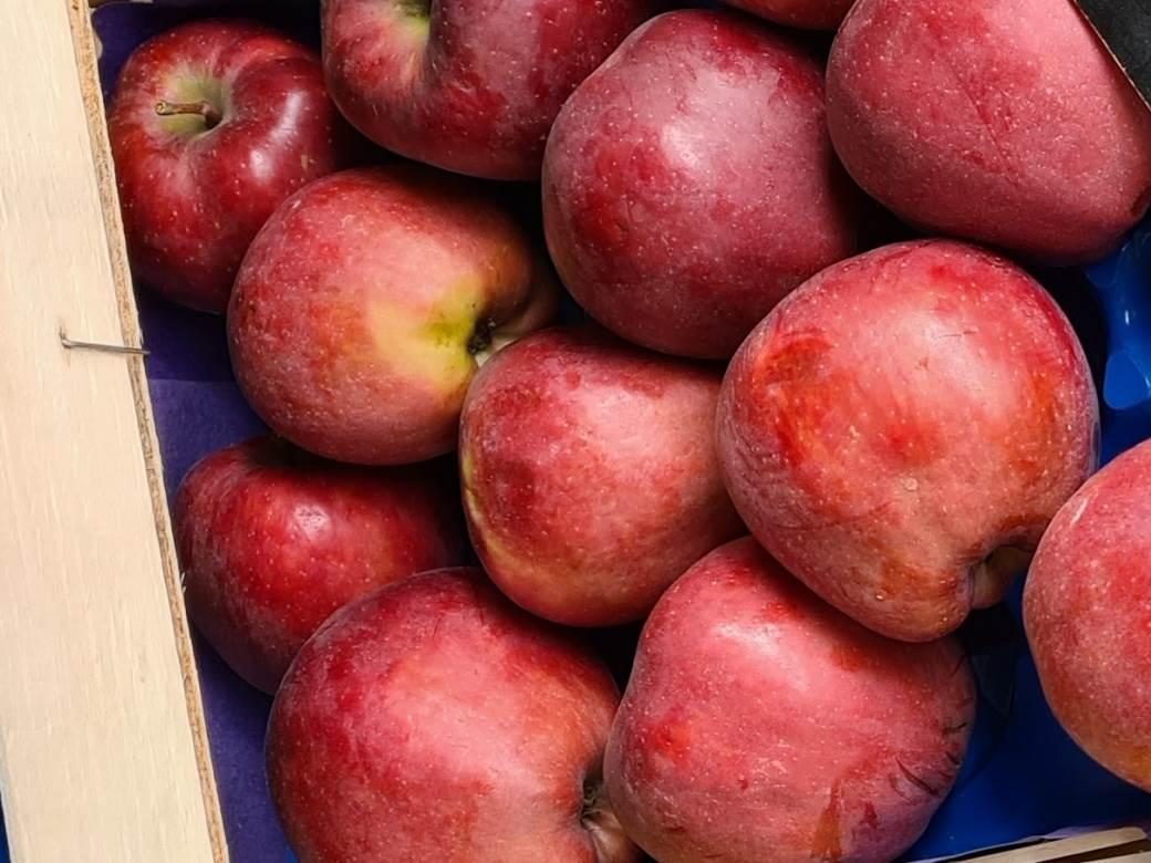 jabuke crveni delises u gajbici