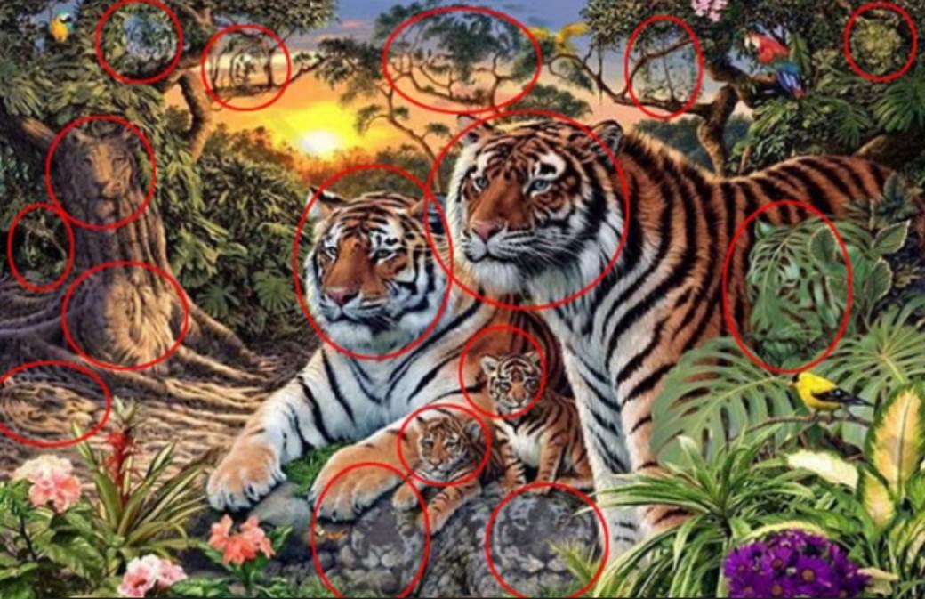 tigrovi test