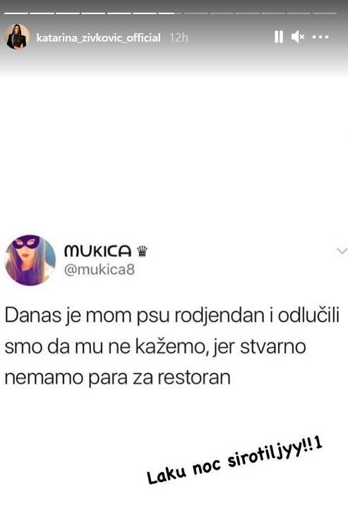 katarina živković instagram post rođendansko slavlje za kuče