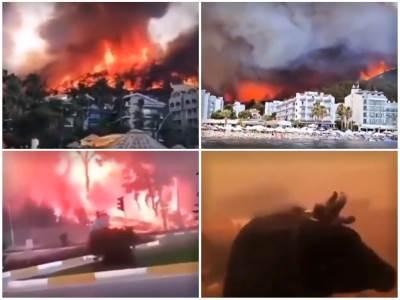 Požar-Tursk