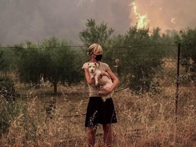 evija,-požar,-beograđanka