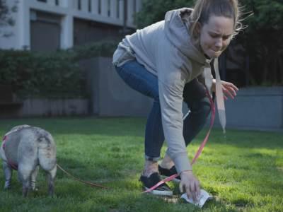 Skupljanje psećeg izmeta